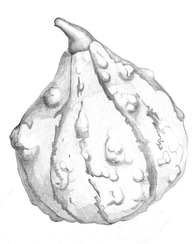 pumpkin-crop