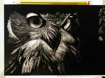 Eagle owl face - scratch board