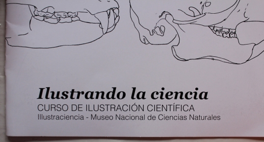Illustraciencia - the organizers