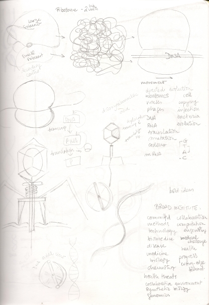 Concepts, adjectives and first ideas