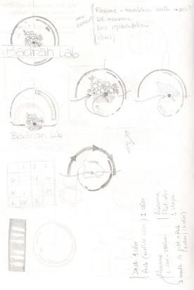 First logo sketches